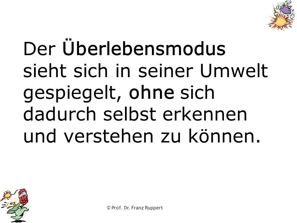 © Prof. Dr. Franz Ruppert Der Überlebensmodus sieht sich in seiner Umwelt gespiegelt, ohne sich dadurch selbst erkennen und verstehen zu können.