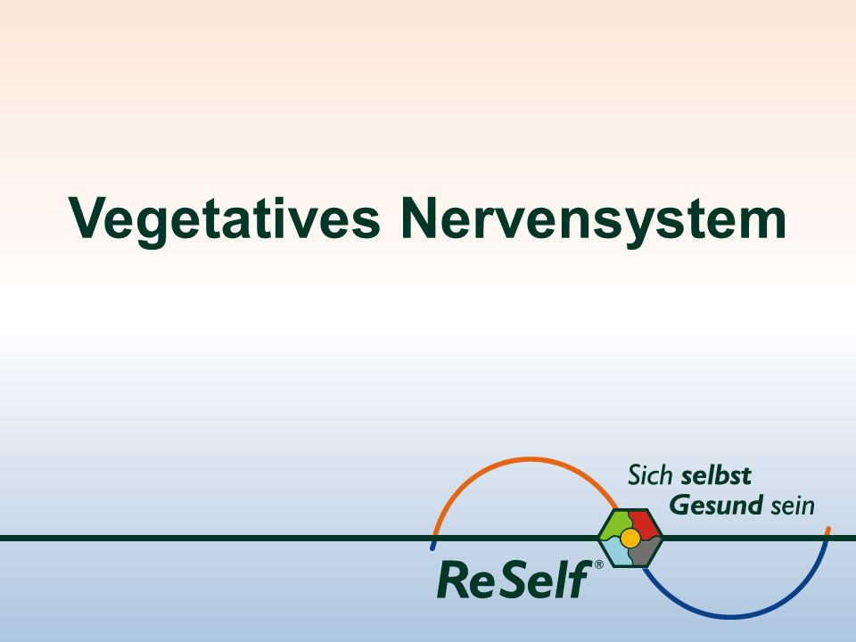 Vegetatives Nervensystem