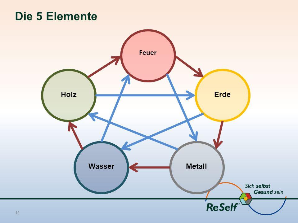 Die 5 Elemente 10 Feuer Holz WasserMetall Erde