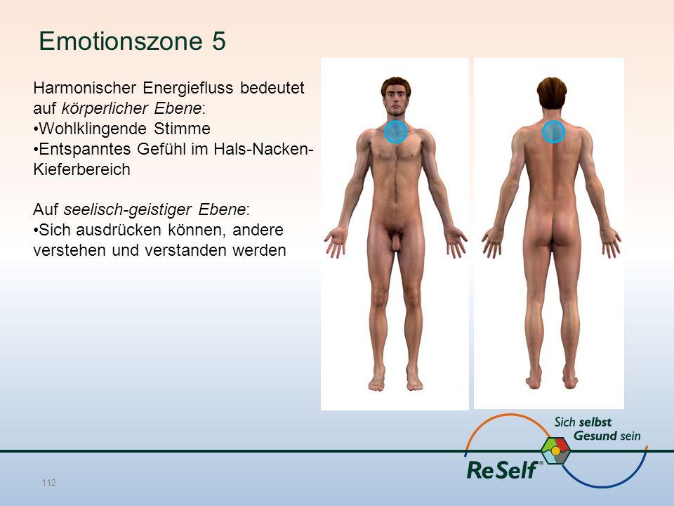Emotionszone 5 Harmonischer Energiefluss bedeutet auf körperlicher Ebene: Wohlklingende Stimme Entspanntes Gefühl im Hals-Nacken- Kieferbereich Auf seelisch-geistiger Ebene: Sich ausdrücken können, andere verstehen und verstanden werden 112