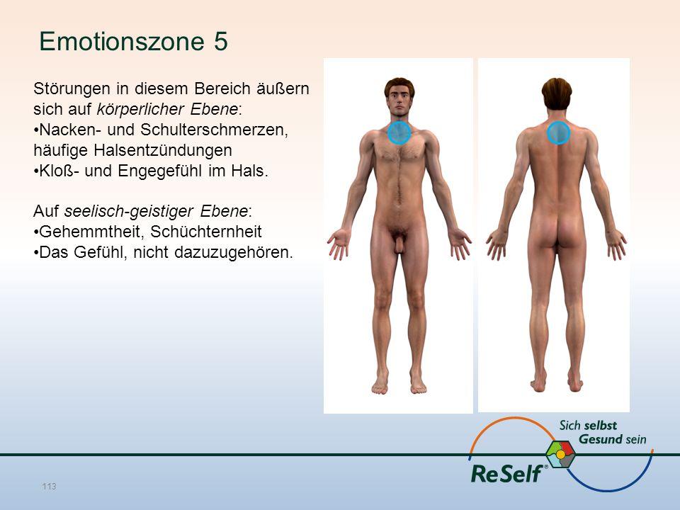 Emotionszone 5 Störungen in diesem Bereich äußern sich auf körperlicher Ebene: Nacken- und Schulterschmerzen, häufige Halsentzündungen Kloß- und Engegefühl im Hals.