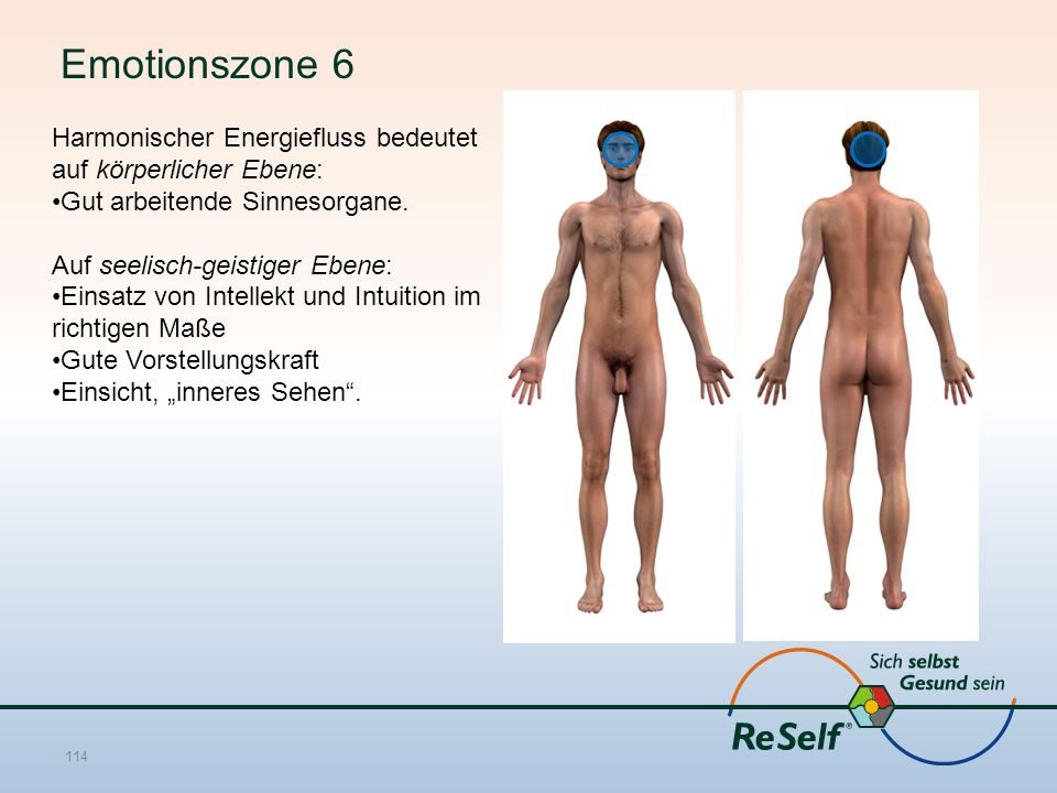 Emotionszone 6 Harmonischer Energiefluss bedeutet auf körperlicher Ebene: Gut arbeitende Sinnesorgane. Auf seelisch-geistiger Ebene: Einsatz von Intel