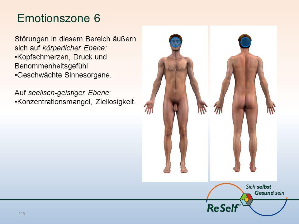 Emotionszone 6 Störungen in diesem Bereich äußern sich auf körperlicher Ebene: Kopfschmerzen, Druck und Benommenheitsgefühl Geschwächte Sinnesorgane.