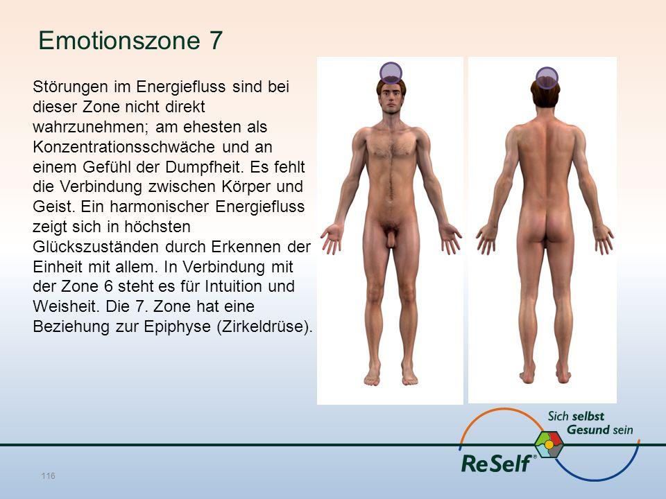 Emotionszone 7 Störungen im Energiefluss sind bei dieser Zone nicht direkt wahrzunehmen; am ehesten als Konzentrationsschwäche und an einem Gefühl der Dumpfheit.