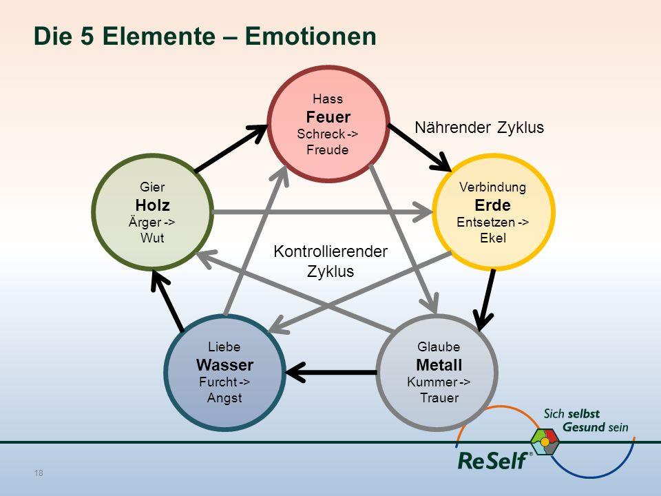 Die 5 Elemente – Emotionen 18 Hass Feuer Schreck -> Freude Gier Holz Ärger -> Wut Liebe Wasser Furcht -> Angst Glaube Metall Kummer -> Trauer Verbindung Erde Entsetzen -> Ekel Kontrollierender Zyklus Nährender Zyklus