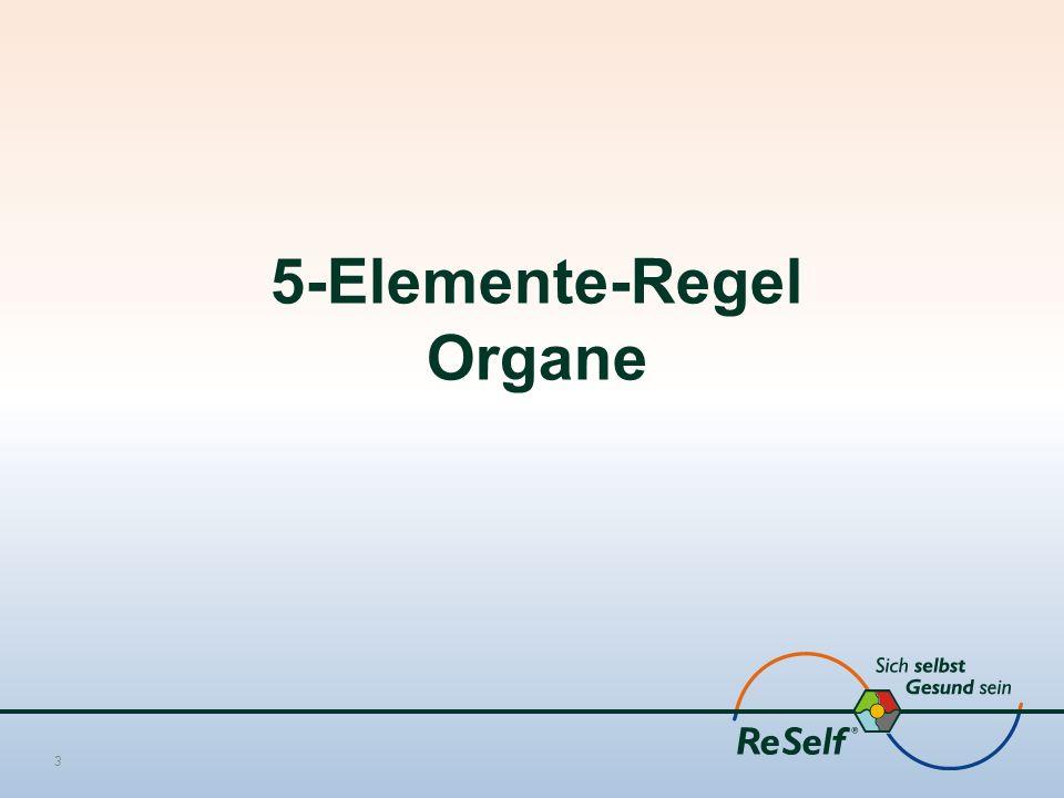 5-Elemente-Regel Organe 3