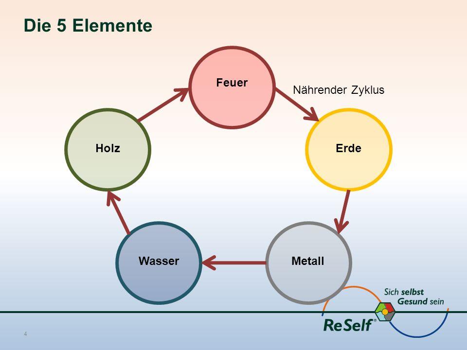 Die 5 Elemente 4 Feuer Holz WasserMetall Erde Nährender Zyklus
