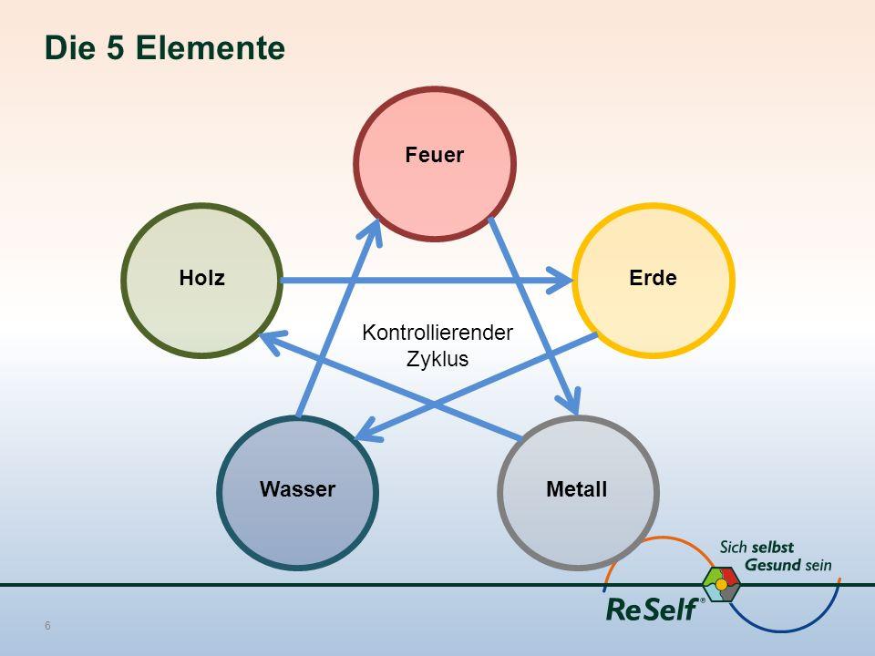 Die 5 Elemente 6 Feuer Holz WasserMetall Erde Kontrollierender Zyklus