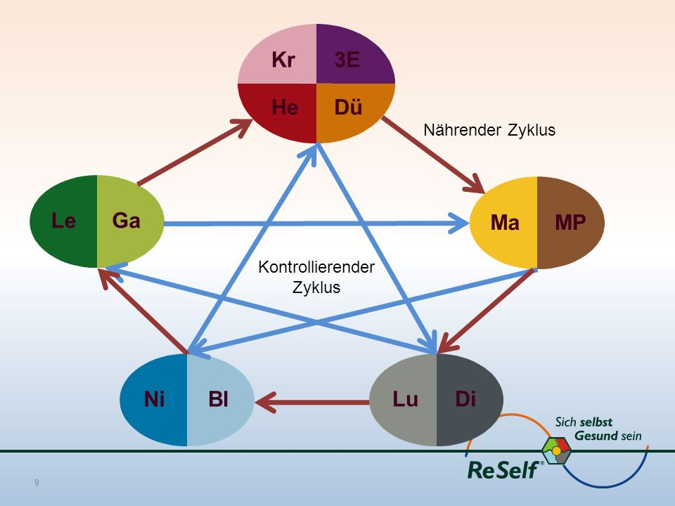 9 Kr3E HeDü LeGaMaMPNiBlLuDi Kontrollierender Zyklus Nährender Zyklus
