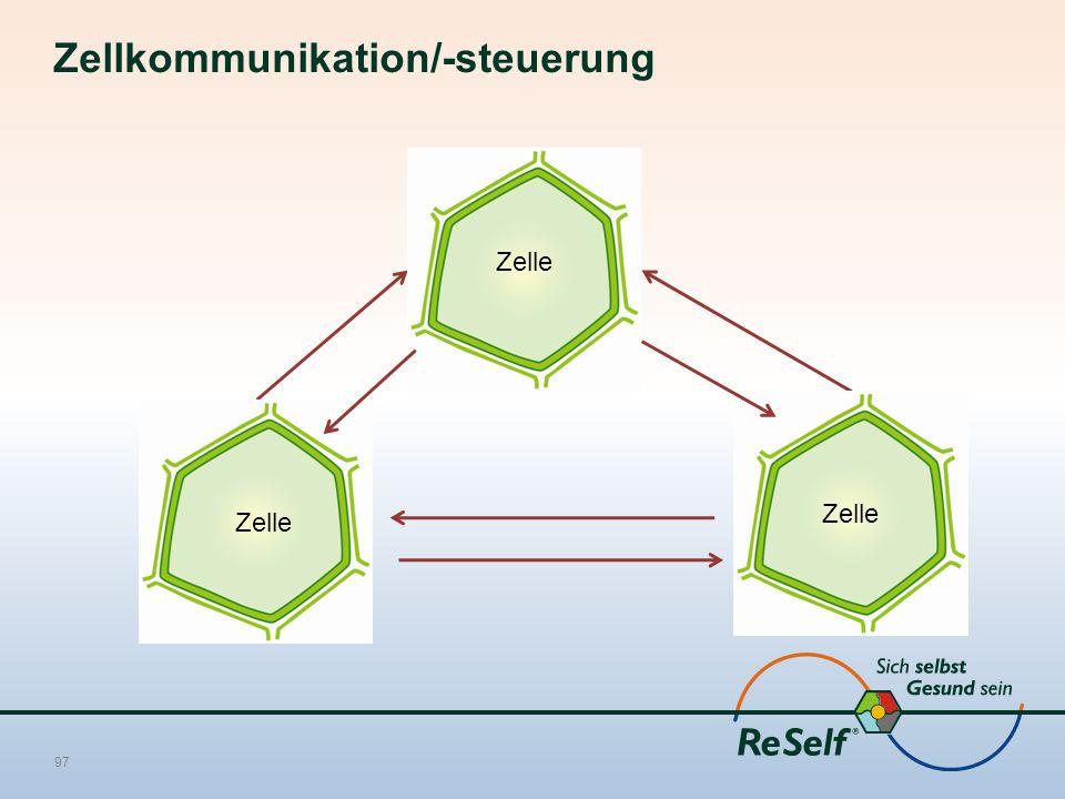 Zellkommunikation/-steuerung 97 Zelle