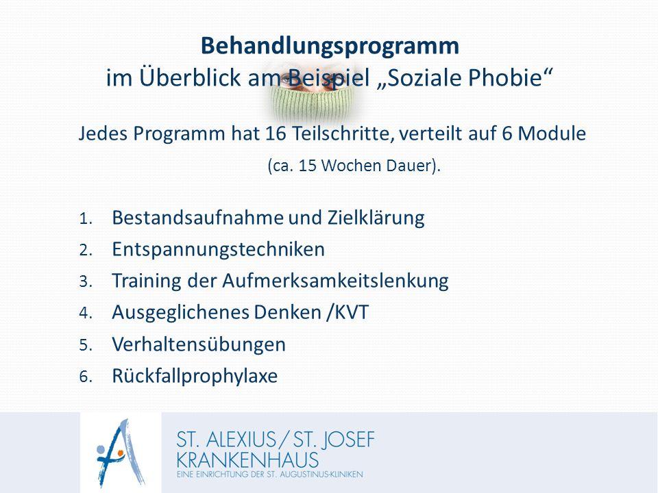 """Behandlungsprogramm im Überblick am Beispiel """"Soziale Phobie Jedes Programm hat 16 Teilschritte, verteilt auf 6 Module (ca."""