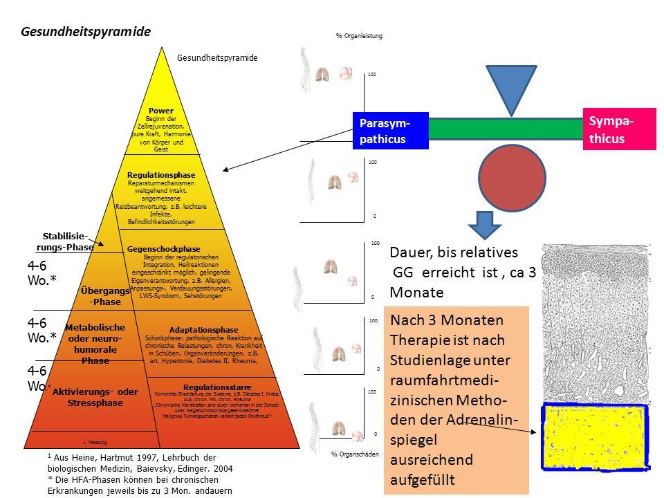 100 0 0 0 0 % Organleistung % Organschäden 100 0 Regulationsstarre Komplette Erschöpfung der Systeme, z.B.