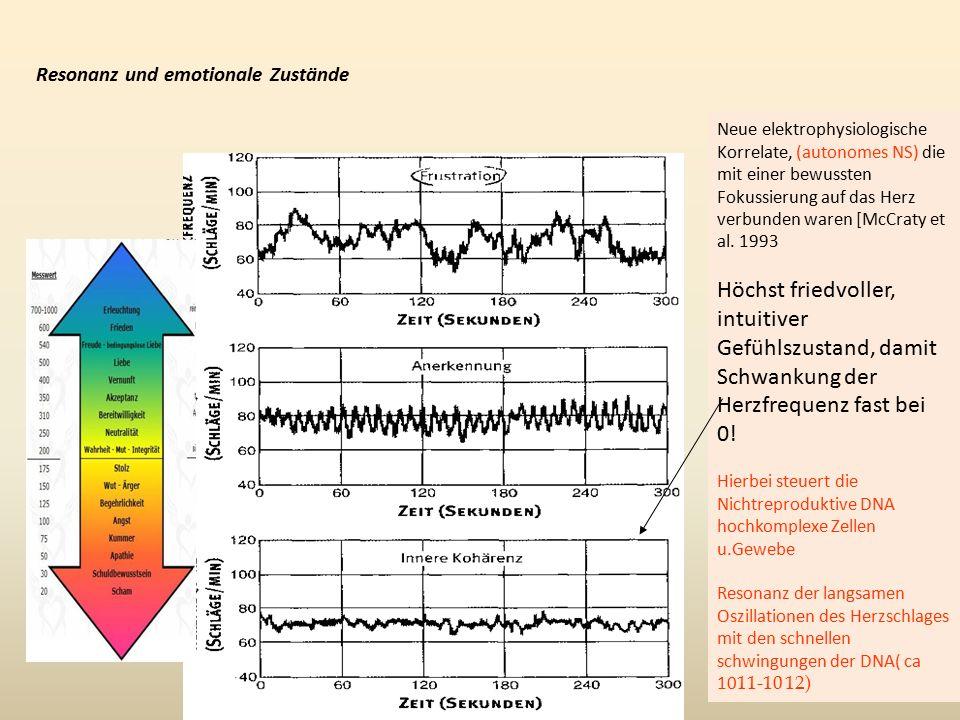 Neue elektrophysiologische Korrelate, (autonomes NS) die mit einer bewussten Fokussierung auf das Herz verbunden waren [McCraty et al.