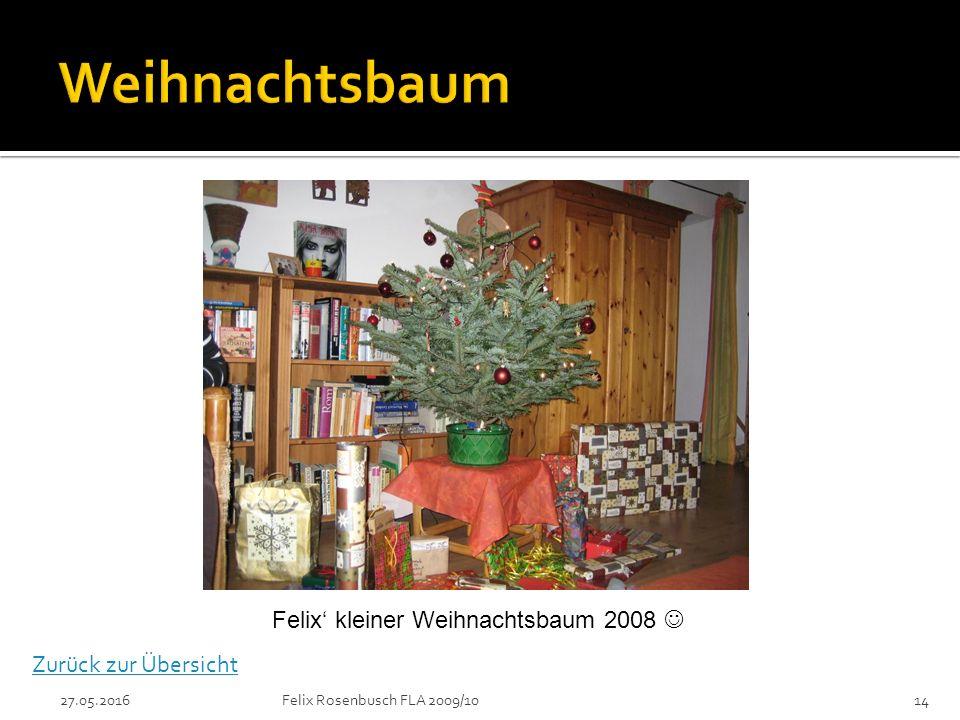 27.05.2016Felix Rosenbusch FLA 2009/1014 Felix' kleiner Weihnachtsbaum 2008 Zurück zur Übersicht