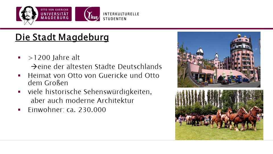 Die Stadt Magdeburg  >1200 Jahre alt  eine der ältesten Städte Deutschlands  Heimat von Otto von Guericke und Otto dem Großen  viele historische Sehenswürdigkeiten, aber auch moderne Architektur  Einwohner: ca.