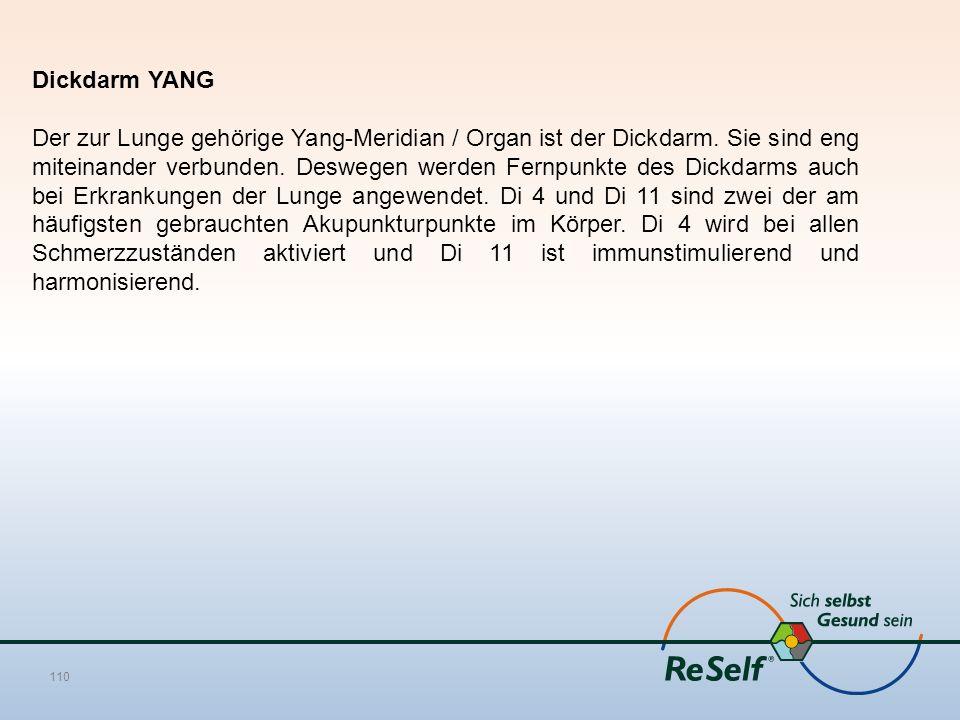 Dickdarm YANG Der zur Lunge gehörige Yang-Meridian / Organ ist der Dickdarm. Sie sind eng miteinander verbunden. Deswegen werden Fernpunkte des Dickda