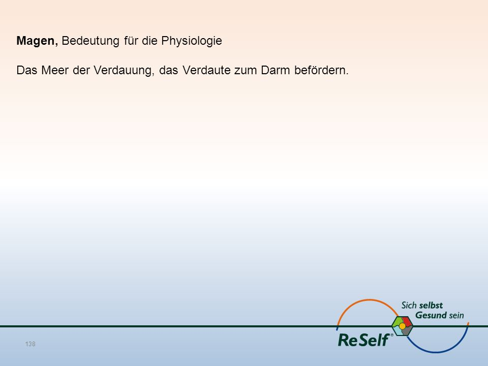 Magen, Bedeutung für die Physiologie Das Meer der Verdauung, das Verdaute zum Darm befördern. 138