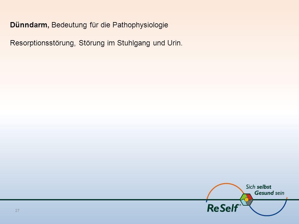 Dünndarm, Bedeutung für die Pathophysiologie Resorptionsstörung, Störung im Stuhlgang und Urin. 27