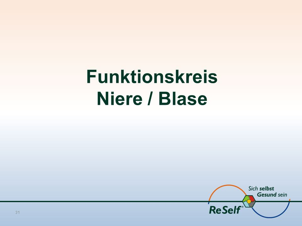 Funktionskreis Niere / Blase 31