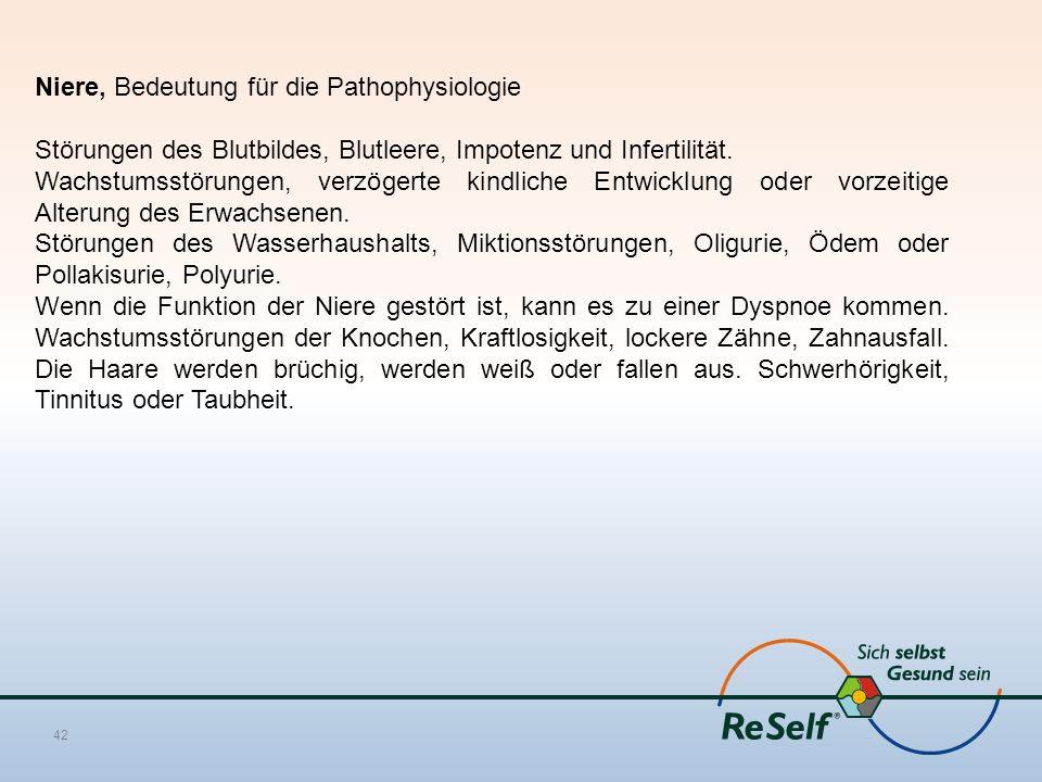 Niere, Bedeutung für die Pathophysiologie Störungen des Blutbildes, Blutleere, Impotenz und Infertilität.