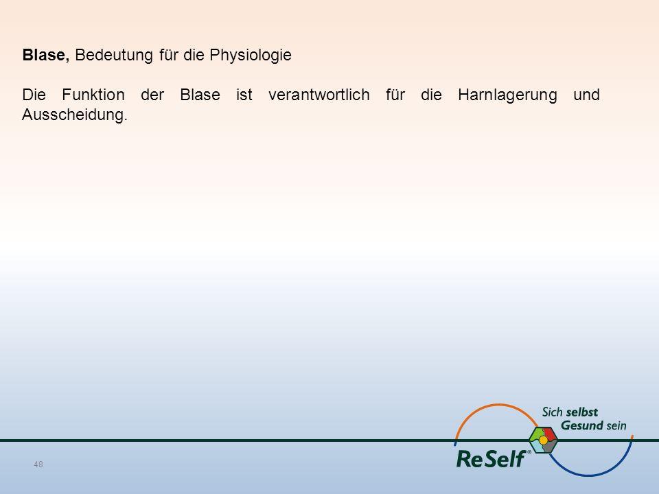 Blase, Bedeutung für die Physiologie Die Funktion der Blase ist verantwortlich für die Harnlagerung und Ausscheidung. 48