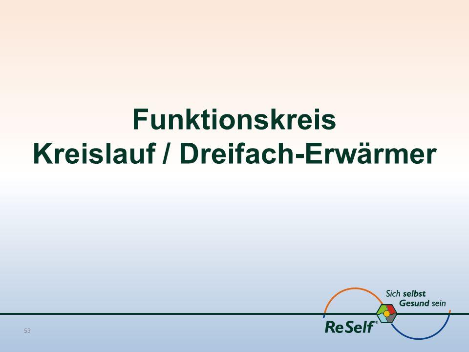 Funktionskreis Kreislauf / Dreifach-Erwärmer 53