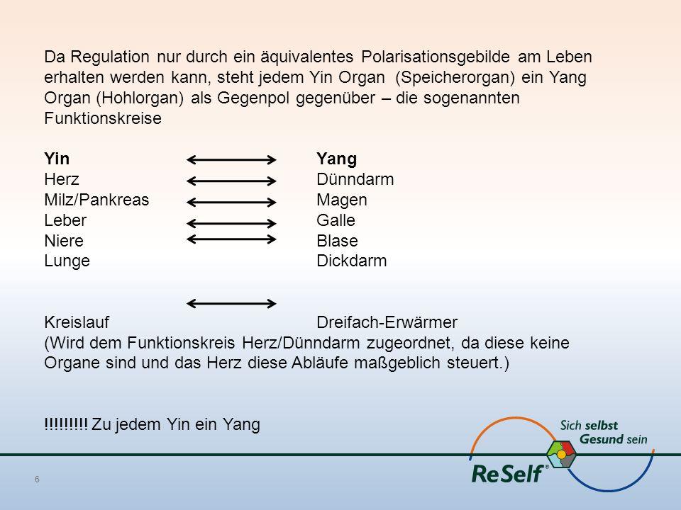Da Regulation nur durch ein äquivalentes Polarisationsgebilde am Leben erhalten werden kann, steht jedem Yin Organ (Speicherorgan) ein Yang Organ (Hohlorgan) als Gegenpol gegenüber – die sogenannten Funktionskreise YinYang HerzDünndarm Milz/PankreasMagen LeberGalle NiereBlase LungeDickdarm Kreislauf Dreifach-Erwärmer (Wird dem Funktionskreis Herz/Dünndarm zugeordnet, da diese keine Organe sind und das Herz diese Abläufe maßgeblich steuert.) !!!!!!!!.