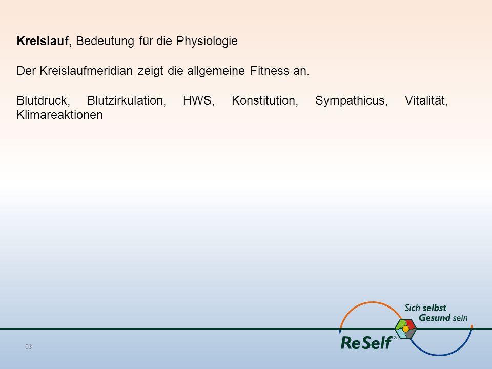 Kreislauf, Bedeutung für die Physiologie Der Kreislaufmeridian zeigt die allgemeine Fitness an.