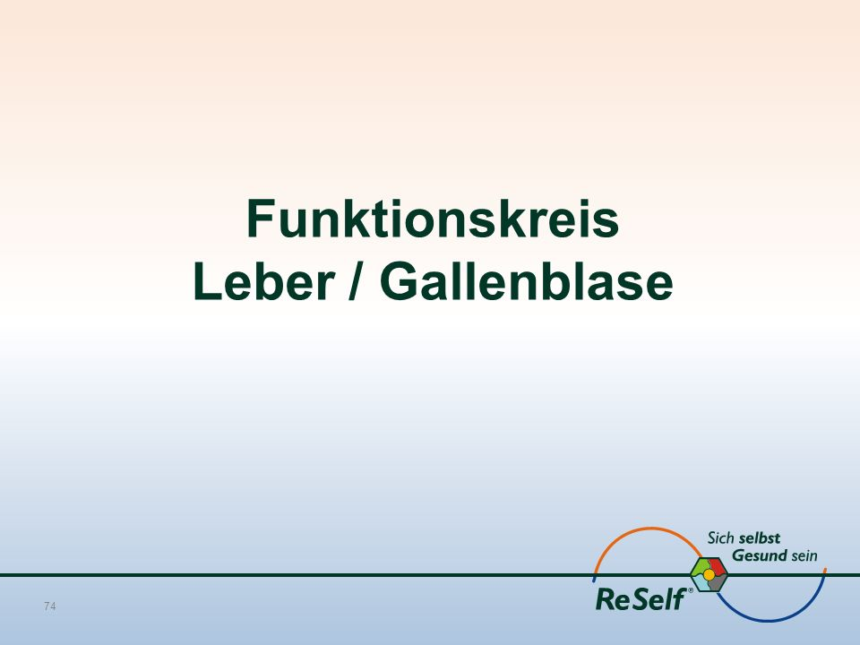 Funktionskreis Leber / Gallenblase 74