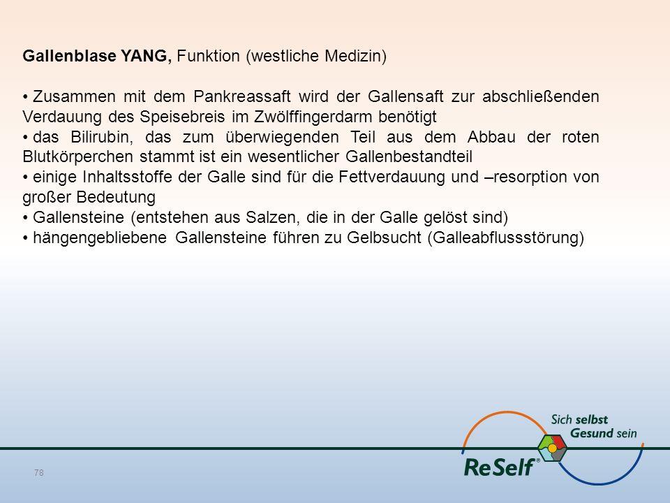 Gallenblase YANG, Funktion (westliche Medizin) Zusammen mit dem Pankreassaft wird der Gallensaft zur abschließenden Verdauung des Speisebreis im Zwölf