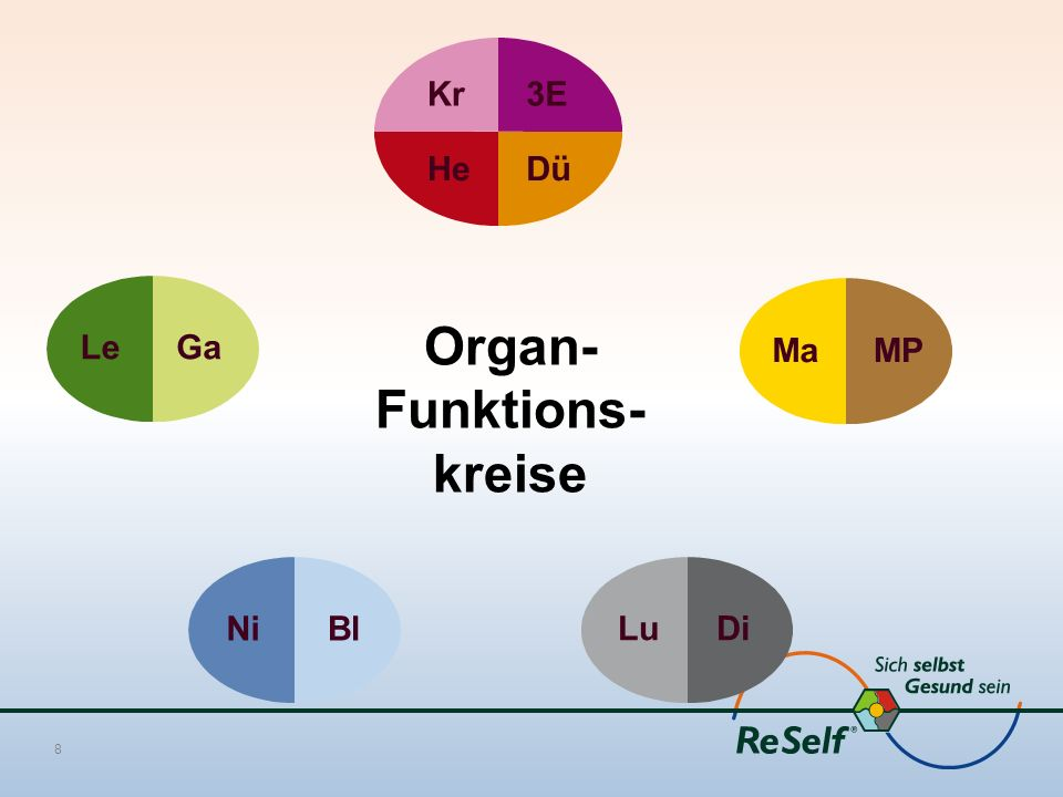 Kr3E HeDü LeGaMaMPNiBlLuDi Organ- Funktions- kreise 8