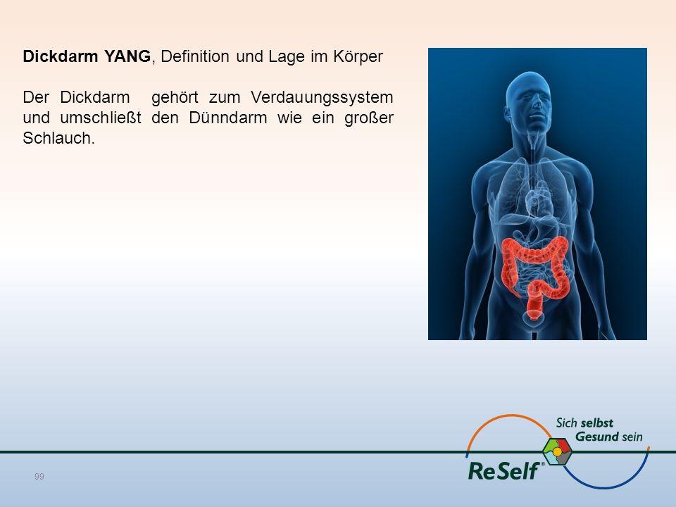 Dickdarm YANG, Definition und Lage im Körper Der Dickdarm gehört zum Verdauungssystem und umschließt den Dünndarm wie ein großer Schlauch. 99