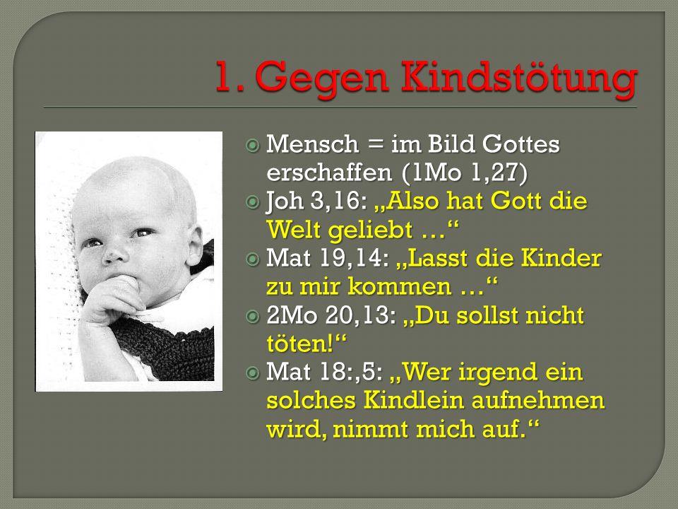 """ Mensch = im Bild Gottes erschaffen (1Mo 1,27)  Joh 3,16: """"Also hat Gott die Welt geliebt …  Mat 19,14: """"Lasst die Kinder zu mir kommen …  2Mo 20,13: """"Du sollst nicht töten!  Mat 18:,5: """"Wer irgend ein solches Kindlein aufnehmen wird, nimmt mich auf."""