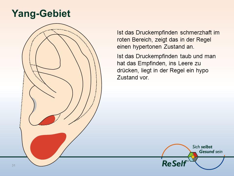 Yang-Gebiet Ist das Druckempfinden schmerzhaft im roten Bereich, zeigt das in der Regel einen hypertonen Zustand an. Ist das Druckempfinden taub und m
