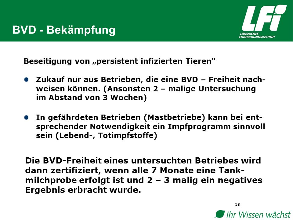 """BVD - Bekämpfung 13 Beseitigung von """"persistent infizierten Tieren Zukauf nur aus Betrieben, die eine BVD – Freiheit nach- weisen können."""