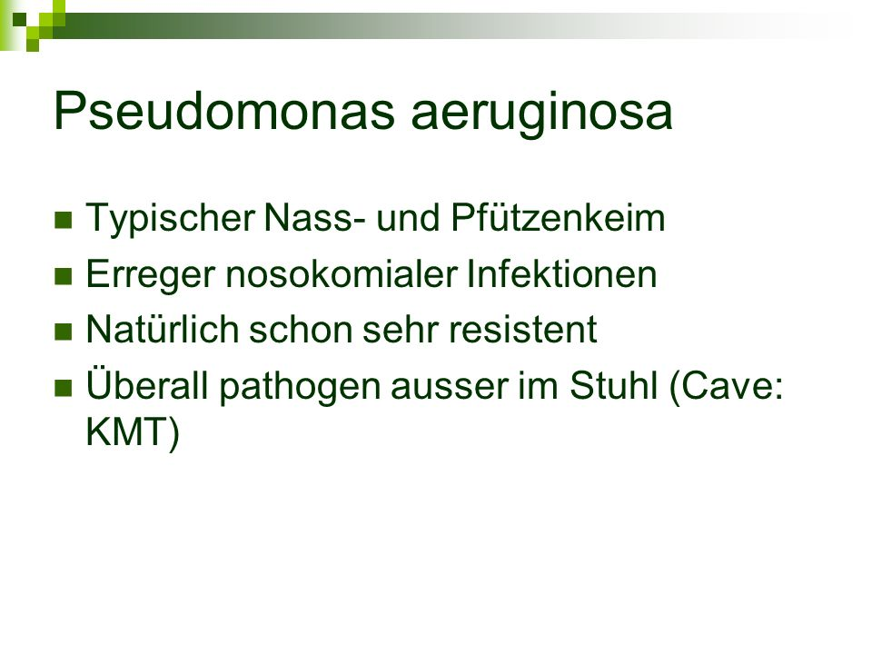 Pseudomonas aeruginosa Typischer Nass- und Pfützenkeim Erreger nosokomialer Infektionen Natürlich schon sehr resistent Überall pathogen ausser im Stuh