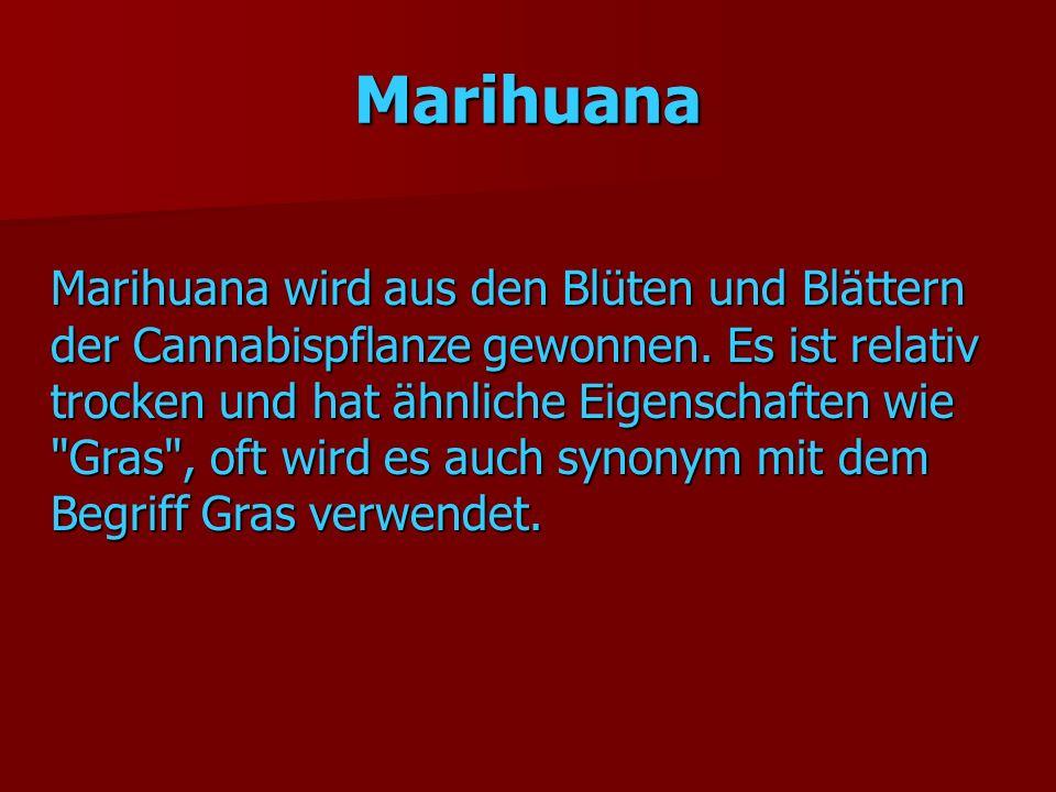 Marihuana Marihuana wird aus den Blüten und Blättern der Cannabispflanze gewonnen. Es ist relativ trocken und hat ähnliche Eigenschaften wie