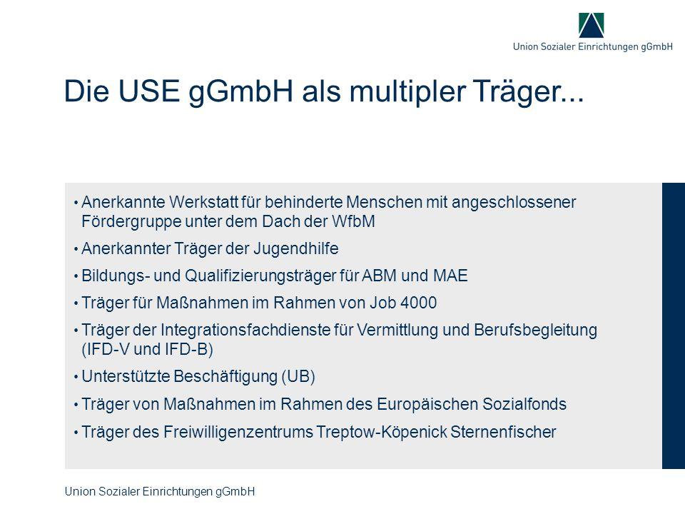 Die USE gGmbH als multipler Träger...