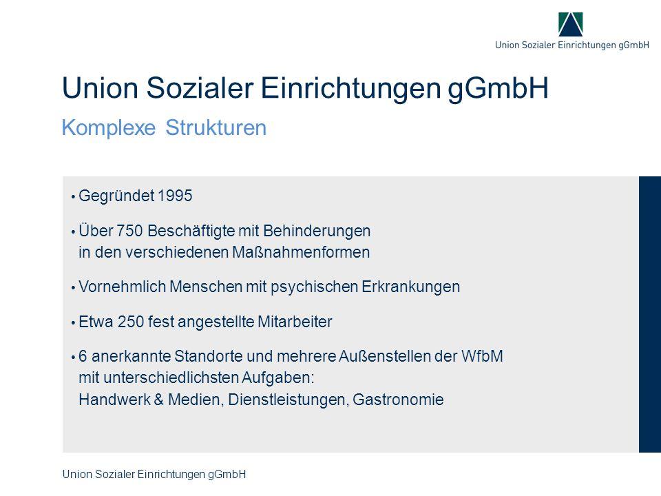Gegründet 1995 Über 750 Beschäftigte mit Behinderungen in den verschiedenen Maßnahmenformen Vornehmlich Menschen mit psychischen Erkrankungen Etwa 250