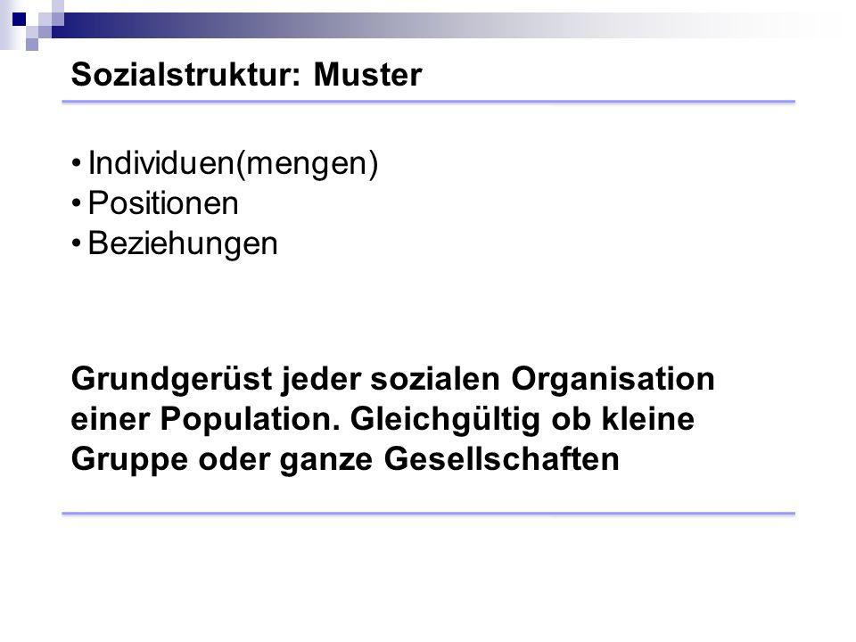 Sozialstruktur: Muster Grundgerüst jeder sozialen Organisation einer Population.