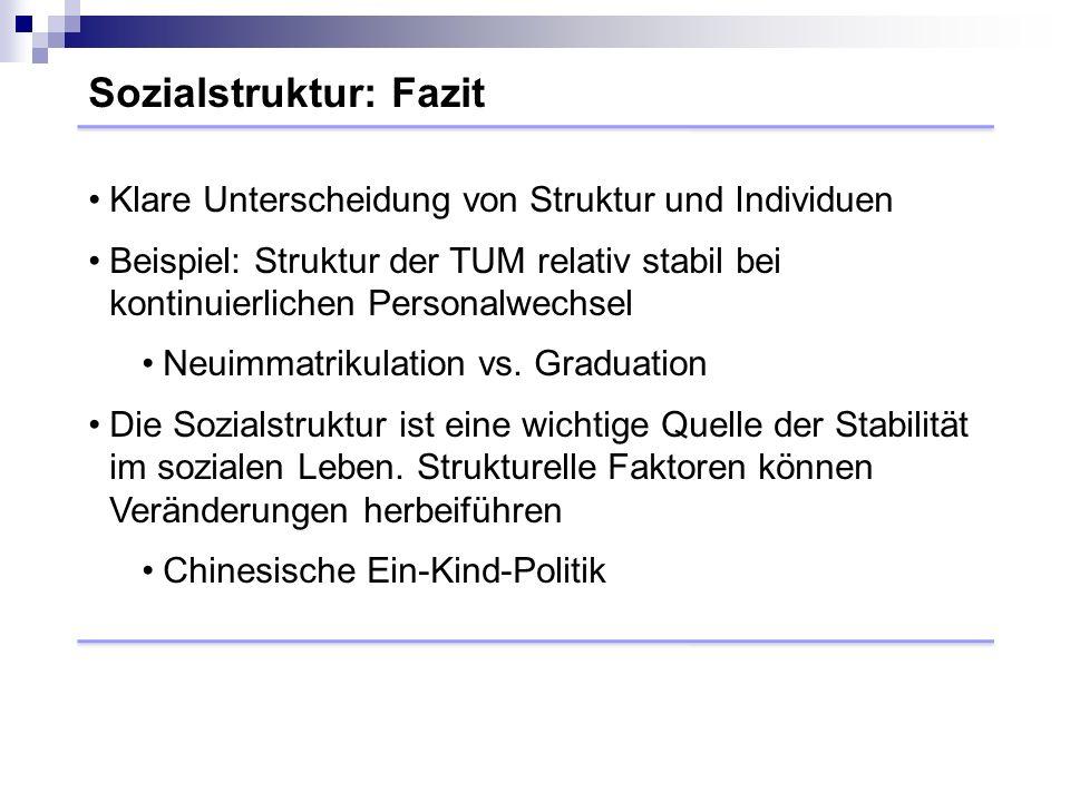 Sozialstruktur: Fazit Klare Unterscheidung von Struktur und Individuen Beispiel: Struktur der TUM relativ stabil bei kontinuierlichen Personalwechsel Neuimmatrikulation vs.