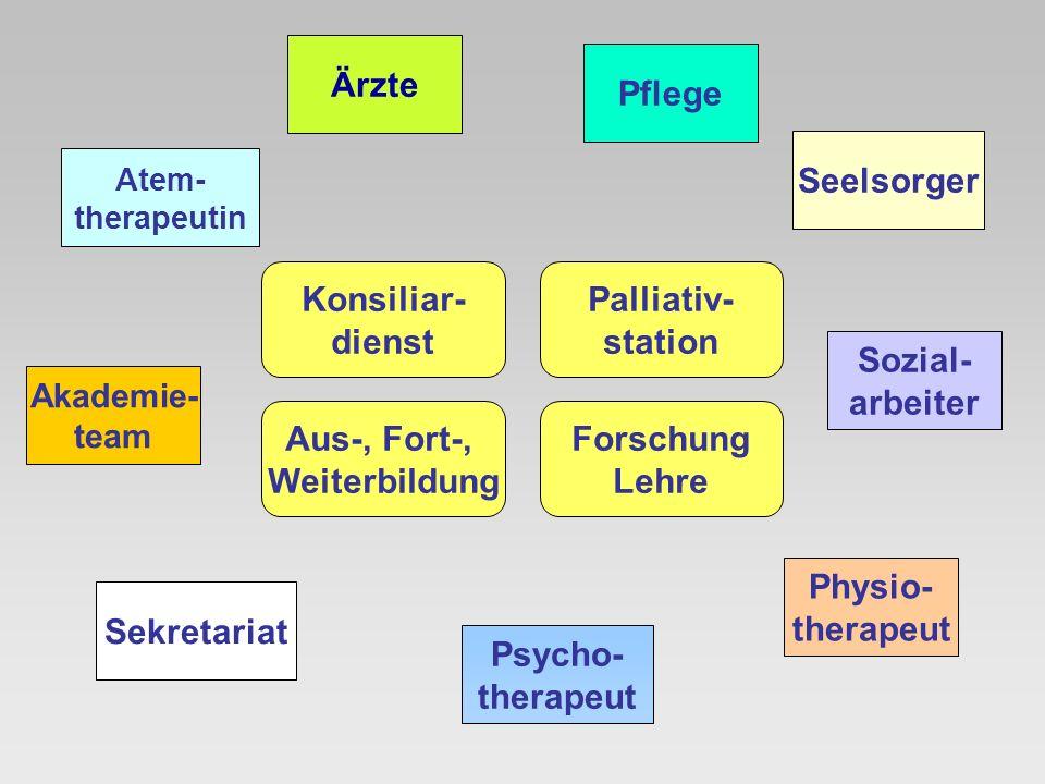 Ärzte Psycho- therapeut Sozial- arbeiter Physio- therapeut Pflege Akademie- team Seelsorger Forschung Lehre Aus-, Fort-, Weiterbildung Sekretariat Ate