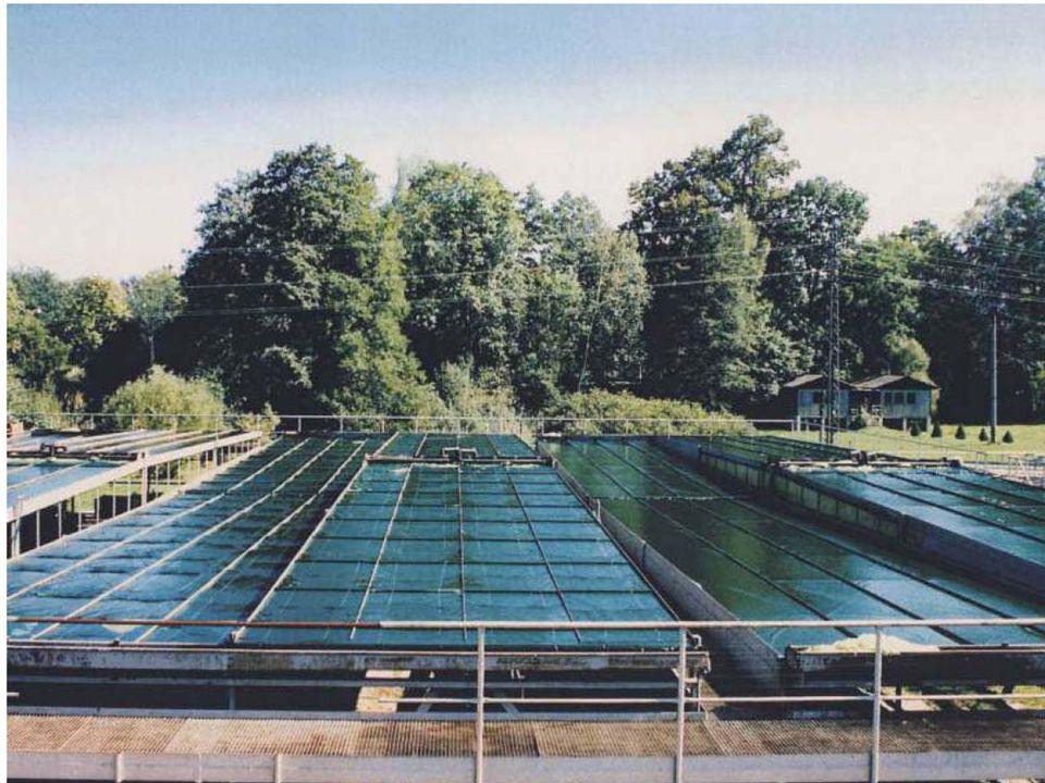 Algenreaktor Flachbett CZ www.alga.cz www.alga.cz
