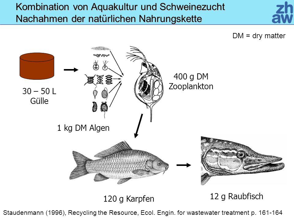 120 g Karpfen 400 g DM Zooplankton 1 kg DM Algen 30 – 50 L Gülle 12 g Raubfisch Kombination von Aquakultur und Schweinezucht Nachahmen der natürlichen Nahrungskette Staudenmann (1996), Recycling the Resource, Ecol.