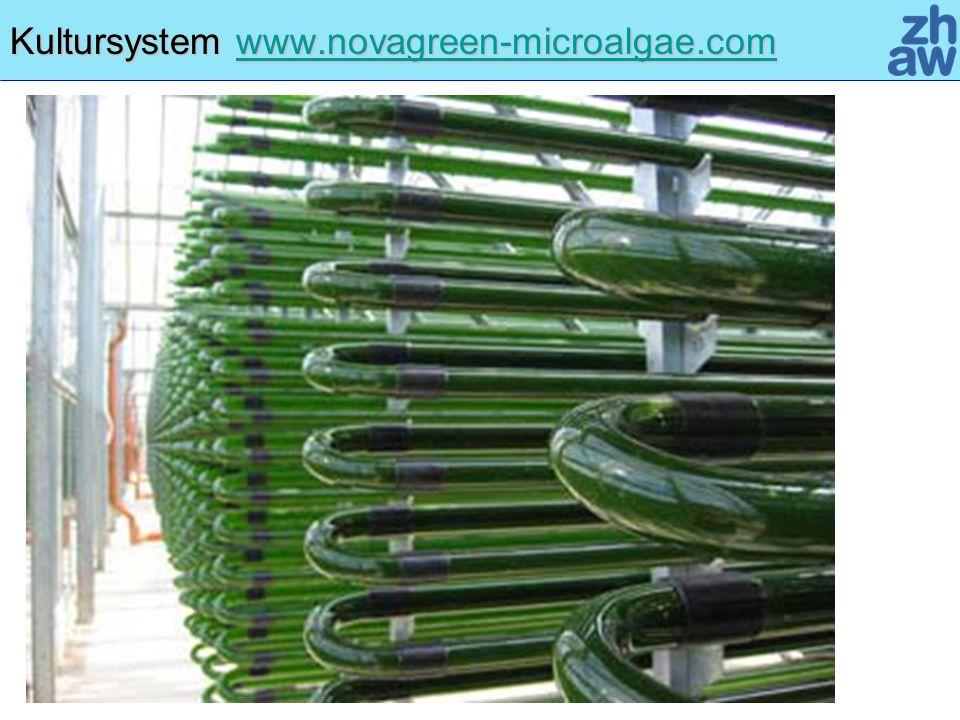 Kultursystem www.novagreen-microalgae.com www.novagreen-microalgae.com
