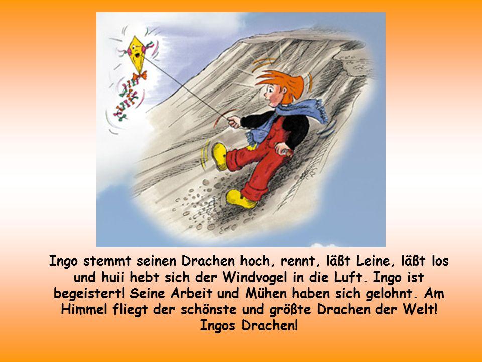 Ingo stemmt seinen Drachen hoch, rennt, läßt Leine, läßt los und huii hebt sich der Windvogel in die Luft.