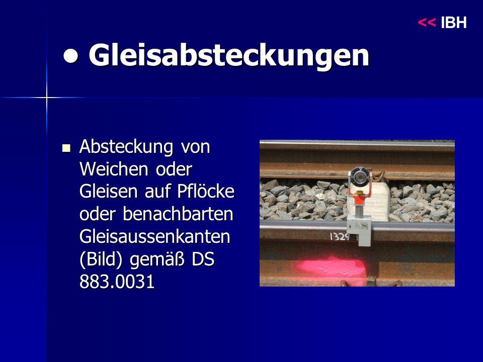 Gleisabsteckungen Gleisabsteckungen Absteckung von Weichen oder Gleisen auf Pflöcke oder benachbarten Gleisaussenkanten (Bild) gemäß DS 883.0031 Absteckung von Weichen oder Gleisen auf Pflöcke oder benachbarten Gleisaussenkanten (Bild) gemäß DS 883.0031 << IBH