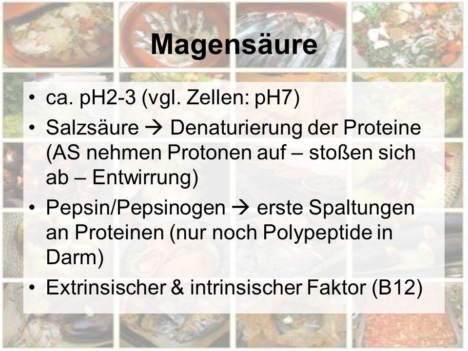 Magensäure ca. pH2-3 (vgl. Zellen: pH7) Salzsäure  Denaturierung der Proteine (AS nehmen Protonen auf – stoßen sich ab – Entwirrung) Pepsin/Pepsinoge
