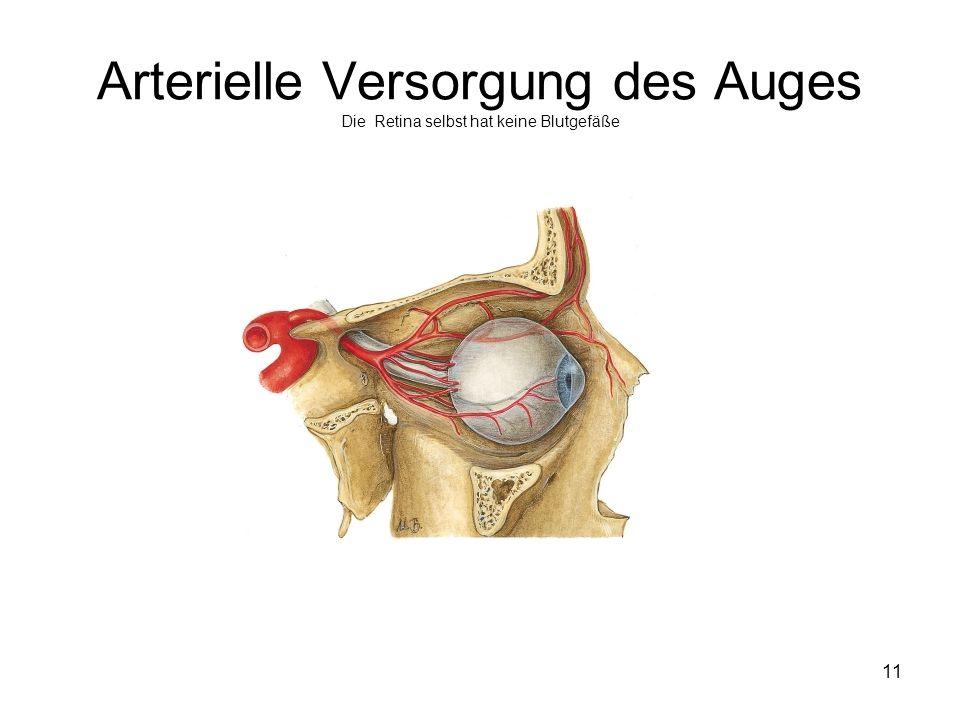 11 Arterielle Versorgung des Auges Die Retina selbst hat keine Blutgefäße