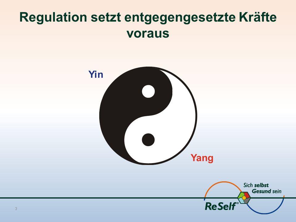 Regulation setzt entgegengesetzte Kräfte voraus 3 Yin Yang